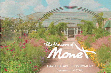 Image of the Flower of Money Exhibit at Garfield Park Conservatory, a fun fall activity in Chicago
