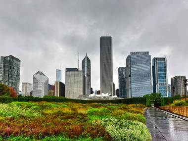 Image of Laurie Garden in Chicago, IL with fall foliage